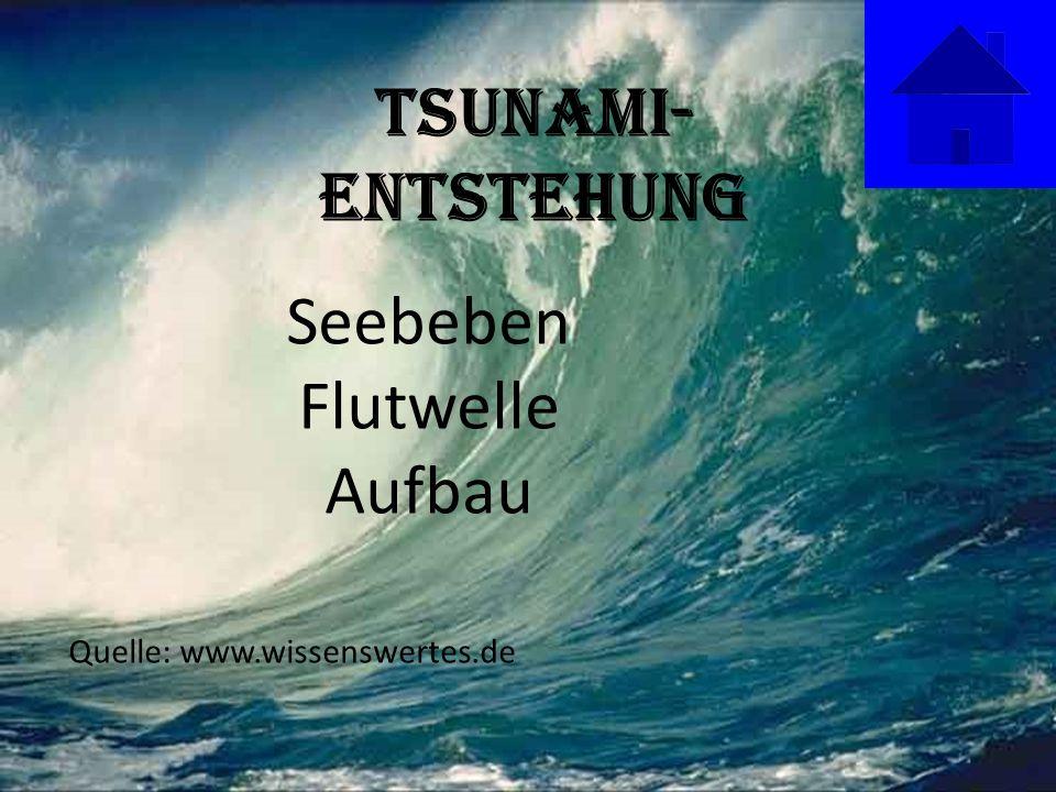 Tsunami-Entstehung Seebeben Flutwelle Aufbau