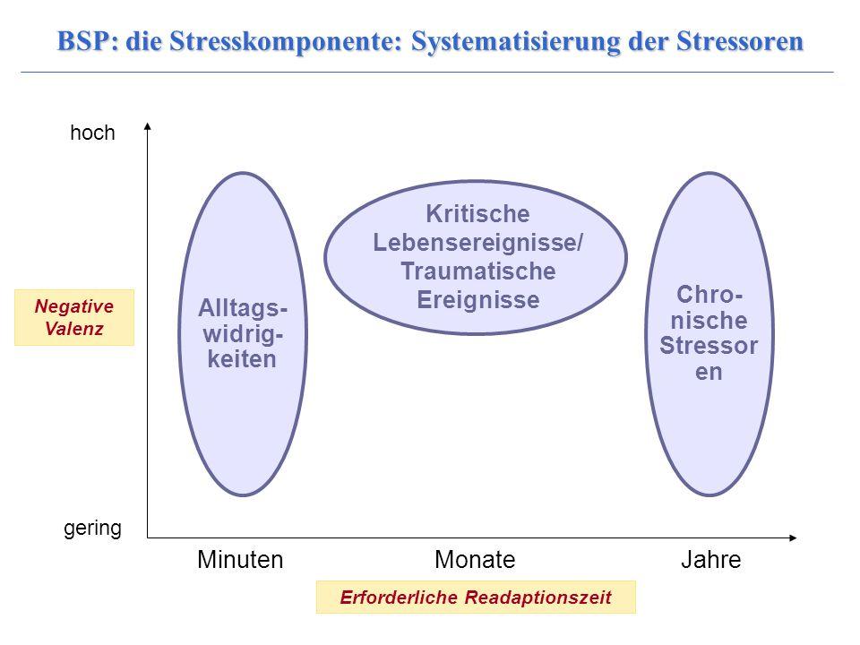 BSP: die Stresskomponente: Systematisierung der Stressoren