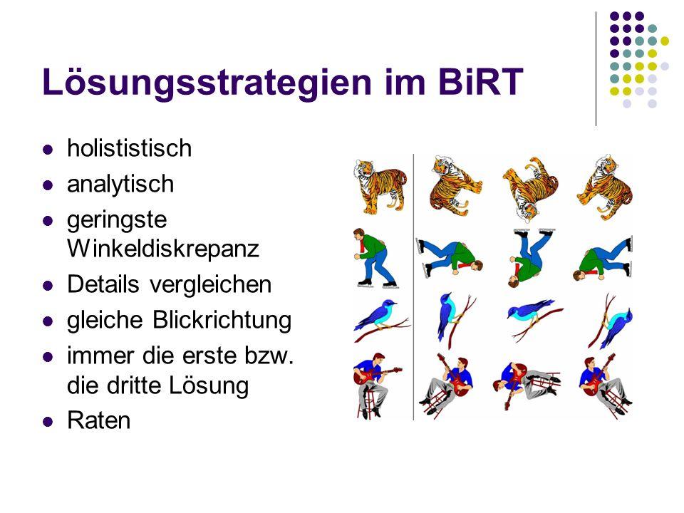 Lösungsstrategien im BiRT