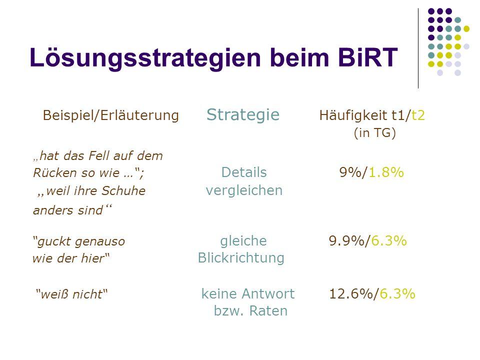 Lösungsstrategien beim BiRT