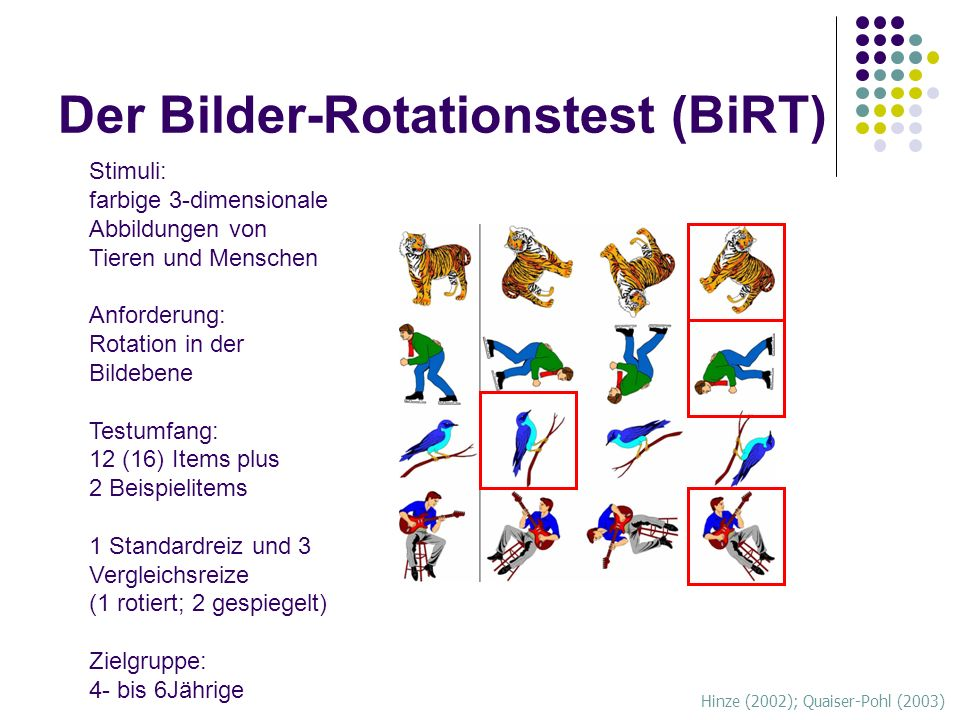 Der Bilder-Rotationstest (BiRT)