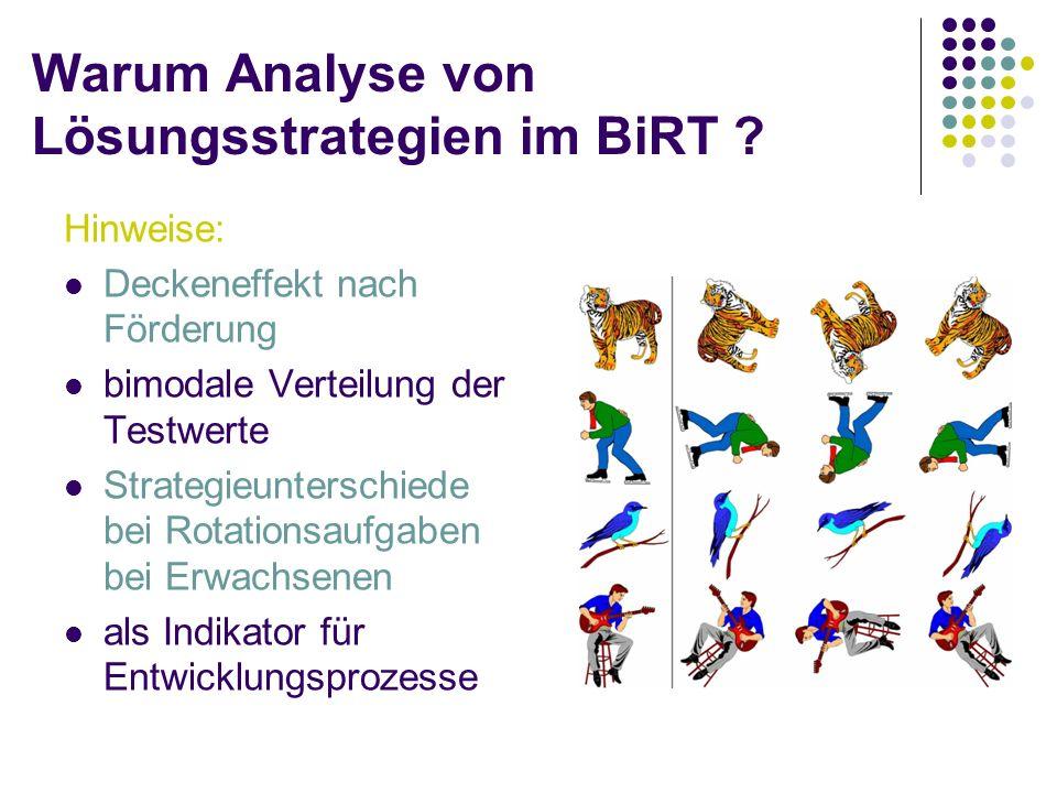 Warum Analyse von Lösungsstrategien im BiRT