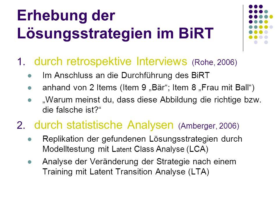 Erhebung der Lösungsstrategien im BiRT