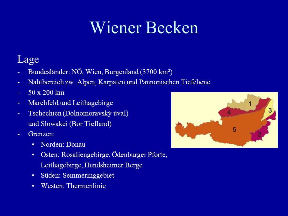 Wiener Becken Lage Bundesländer: NÖ, Wien, Burgenland (3700 km²)