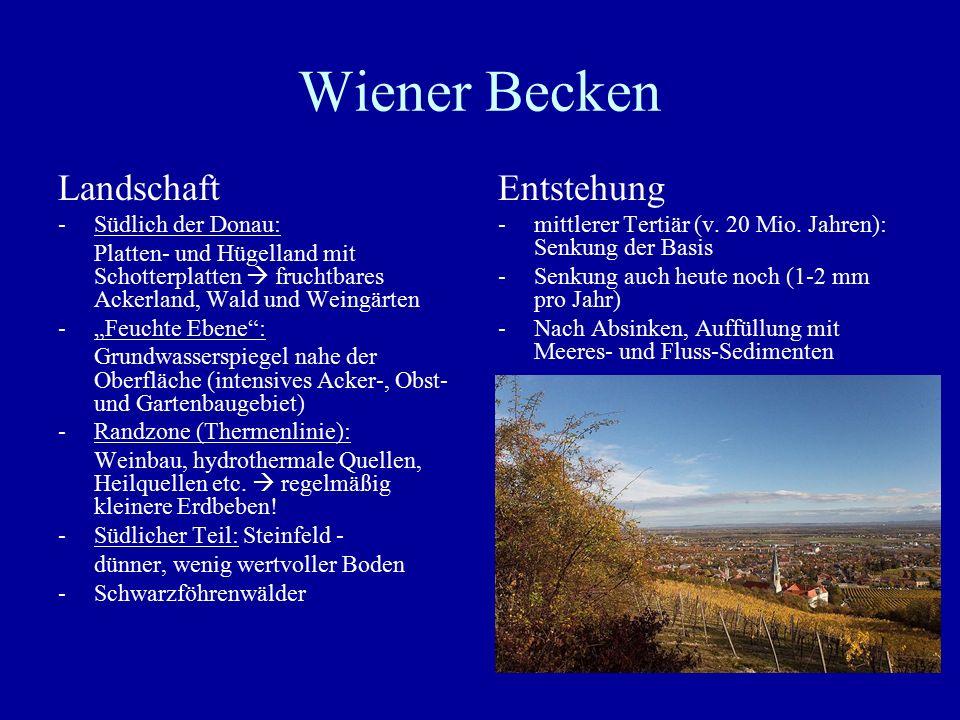 Wiener Becken Landschaft Entstehung Südlich der Donau:
