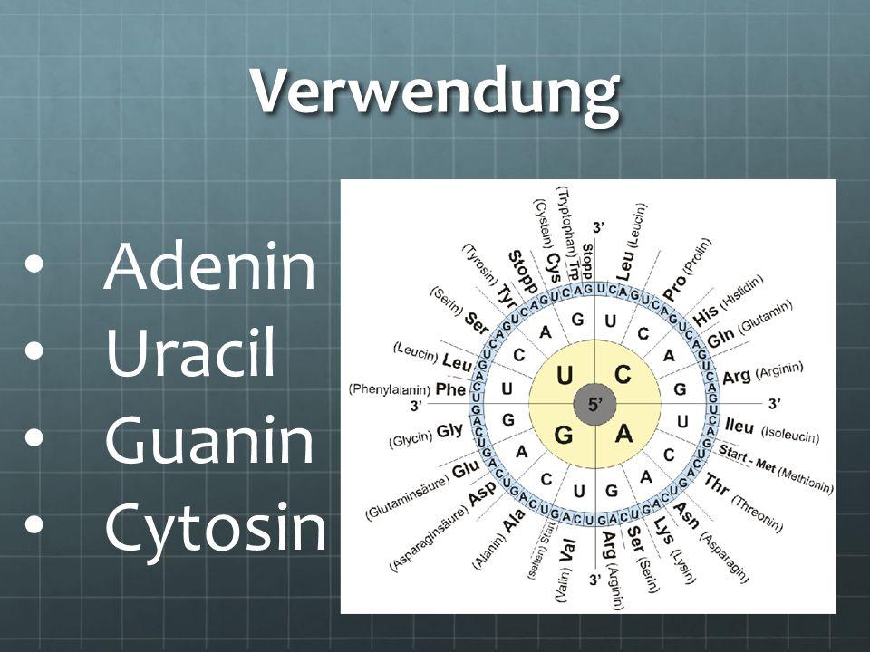 Verwendung Adenin Uracil Guanin Cytosin