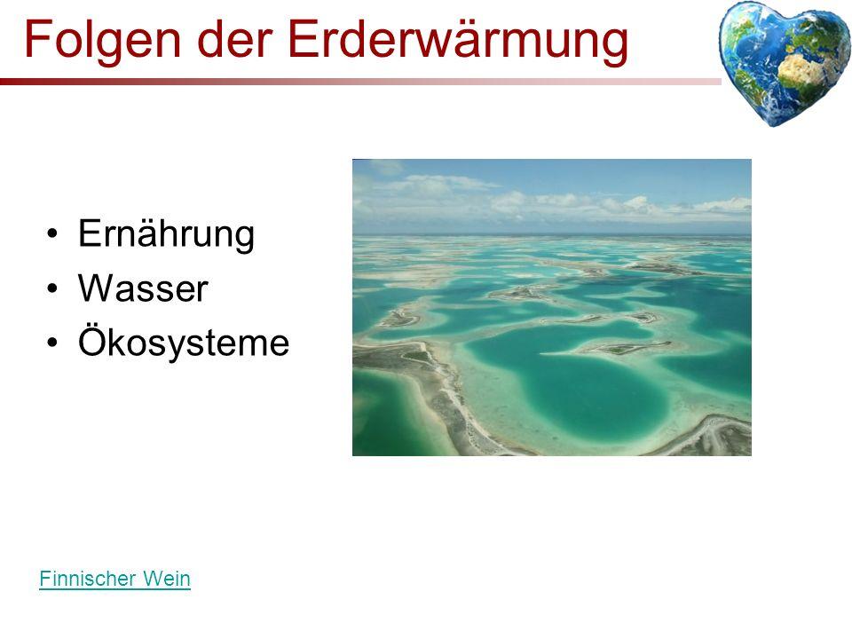 Folgen der Erderwärmung
