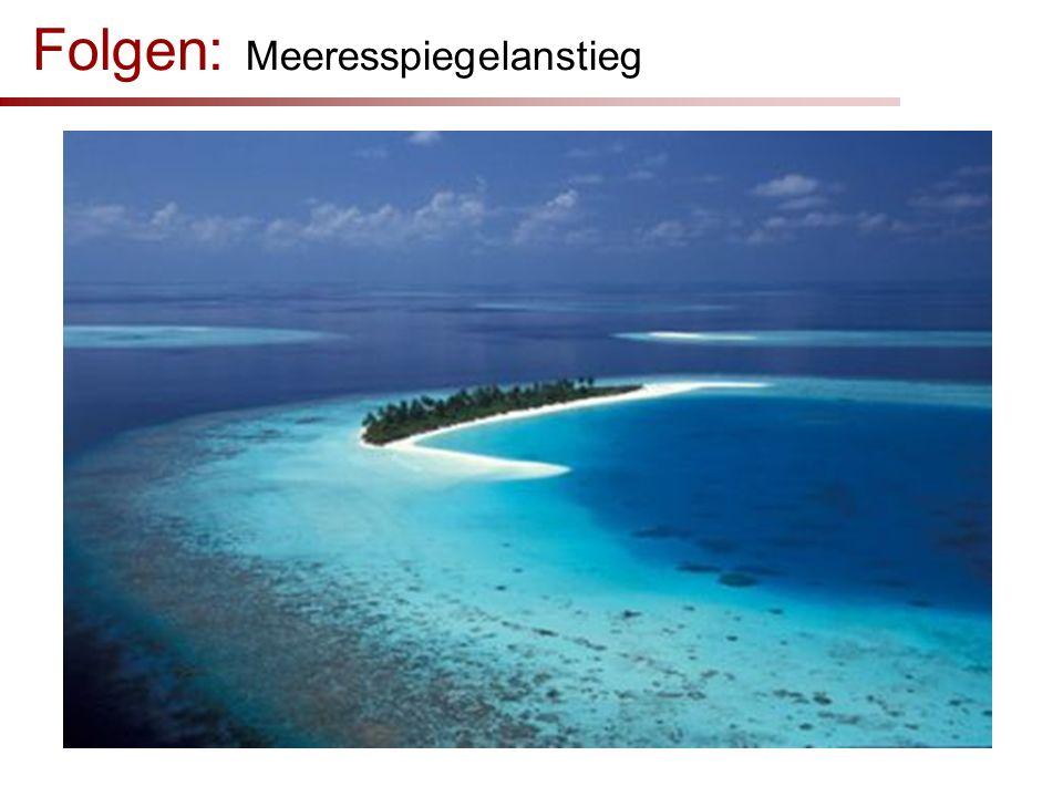Folgen: Meeresspiegelanstieg