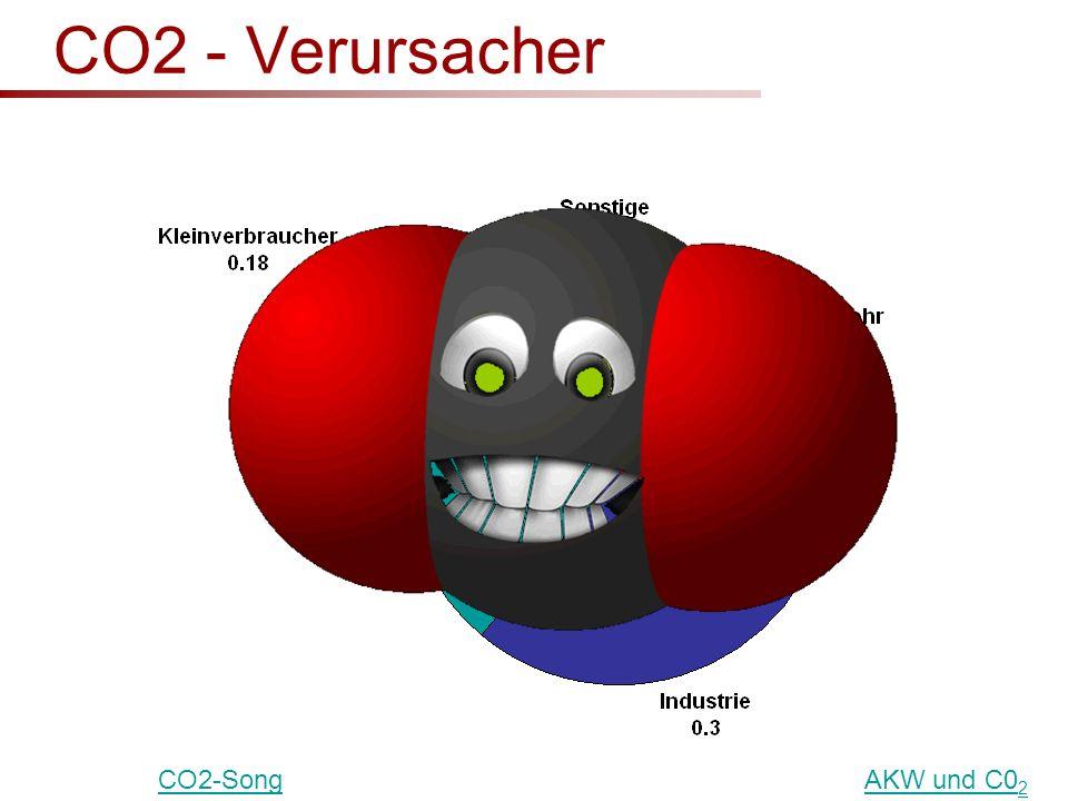 CO2 - Verursacher CO2-Song AKW und C02