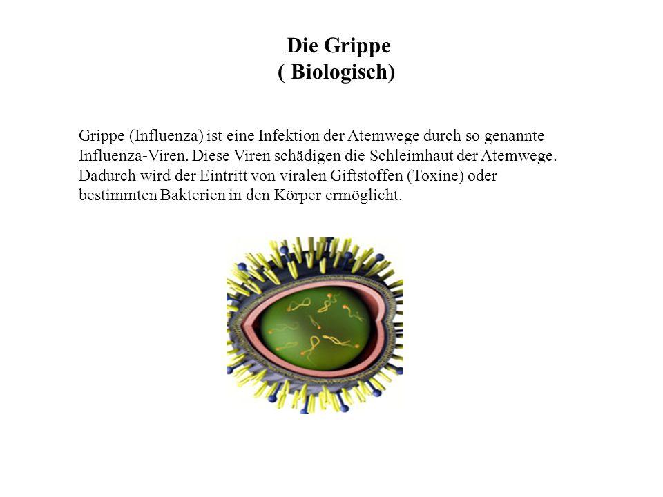 Die Grippe ( Biologisch)