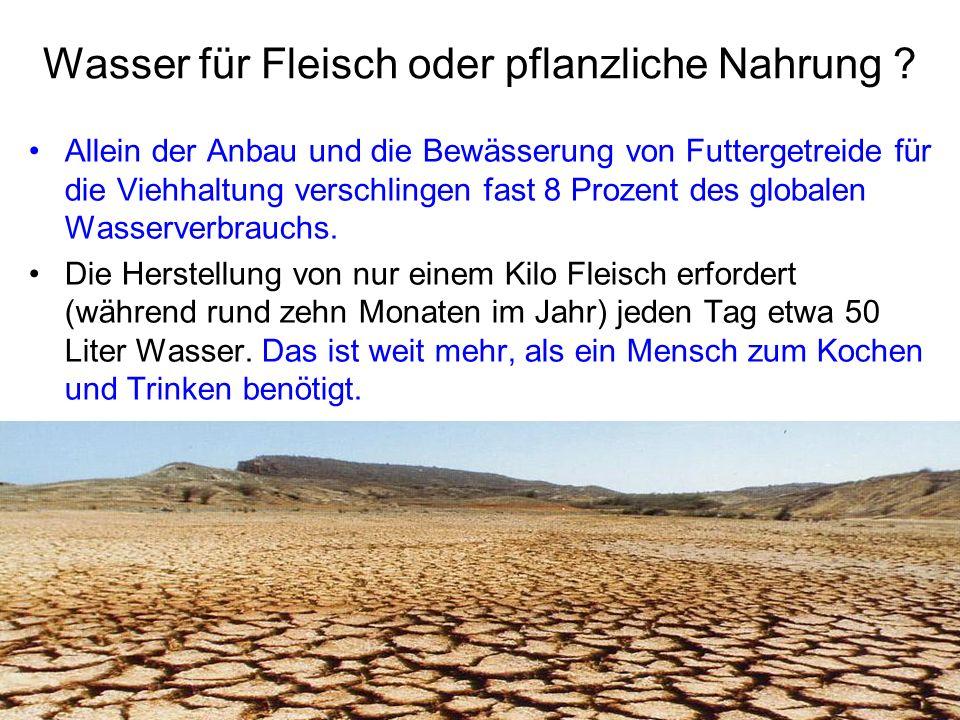 Wasser für Fleisch oder pflanzliche Nahrung