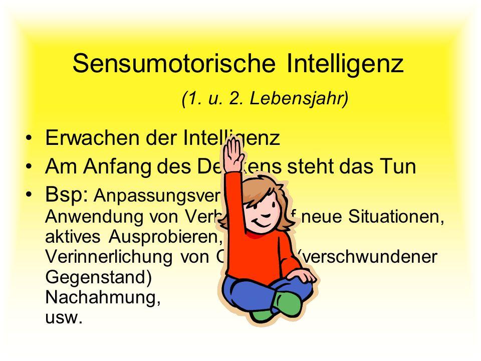Sensumotorische Intelligenz (1. u. 2. Lebensjahr)