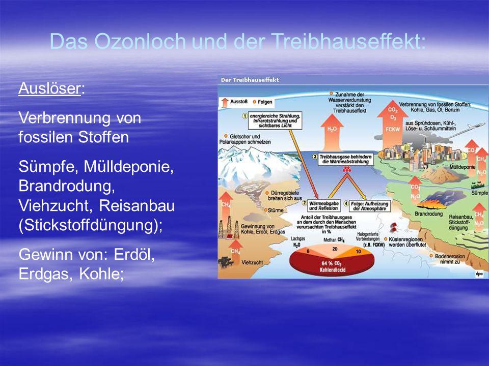 Das Ozonloch und der Treibhauseffekt: