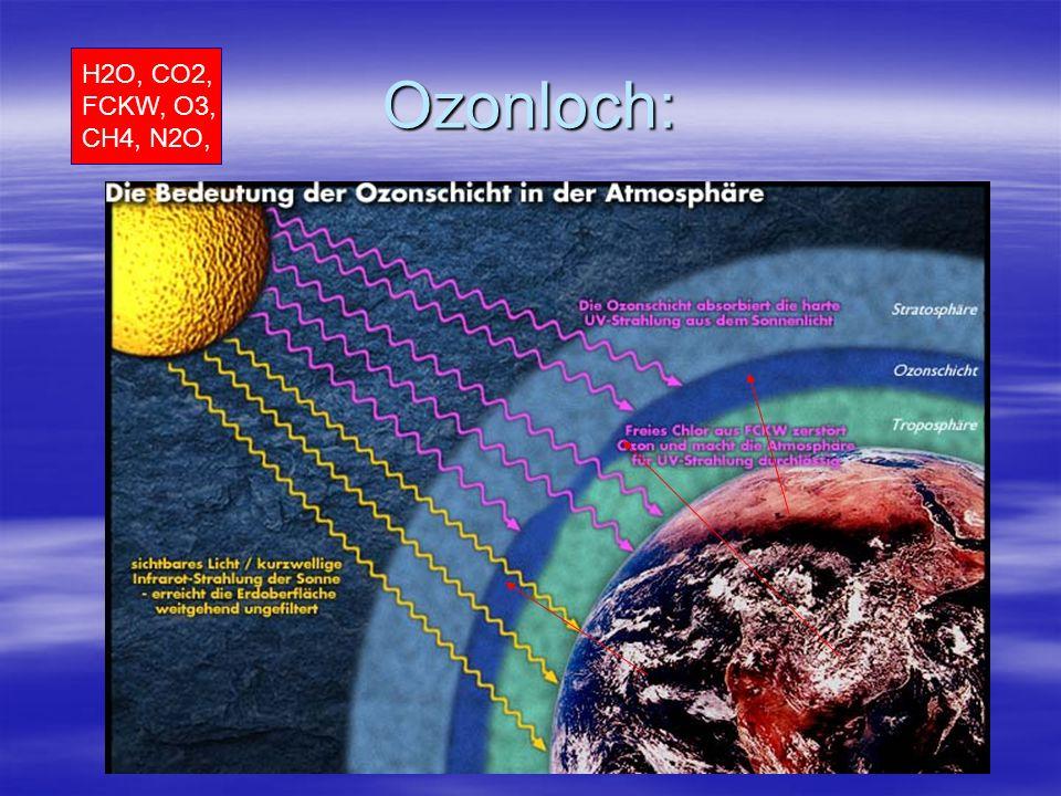 Ozonloch: H2O, CO2, FCKW, O3, CH4, N2O,