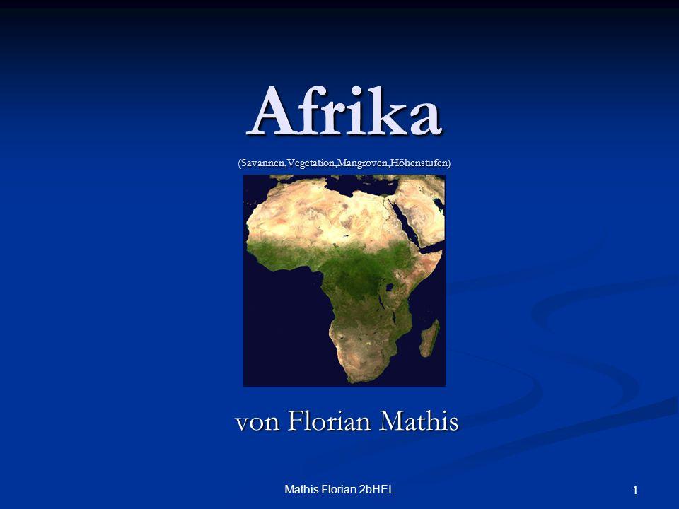 Afrika (Savannen,Vegetation,Mangroven,Höhenstufen)