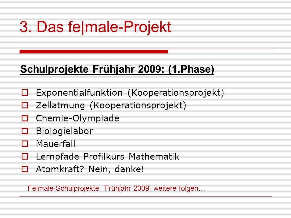 3. Das fe|male-Projekt Schulprojekte Frühjahr 2009: (1.Phase)