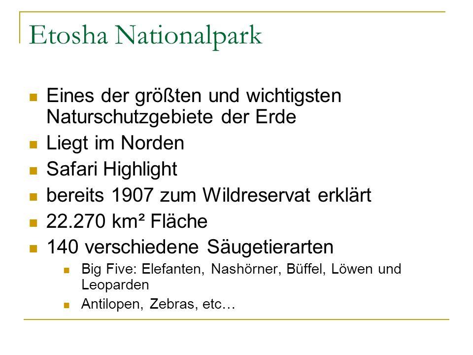 Etosha Nationalpark Eines der größten und wichtigsten Naturschutzgebiete der Erde. Liegt im Norden.