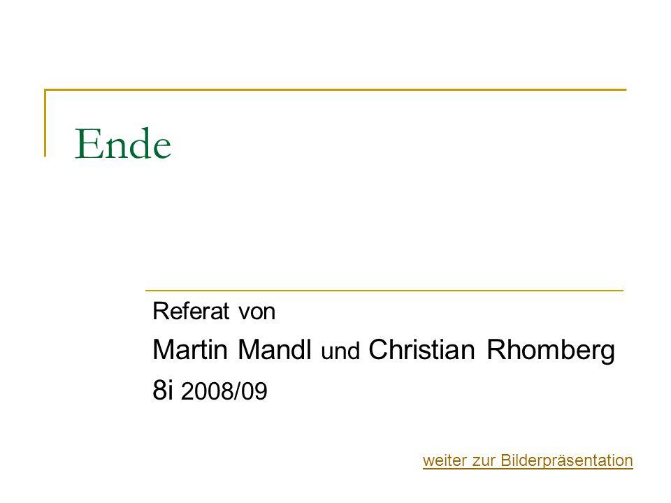 Referat von Martin Mandl und Christian Rhomberg 8i 2008/09