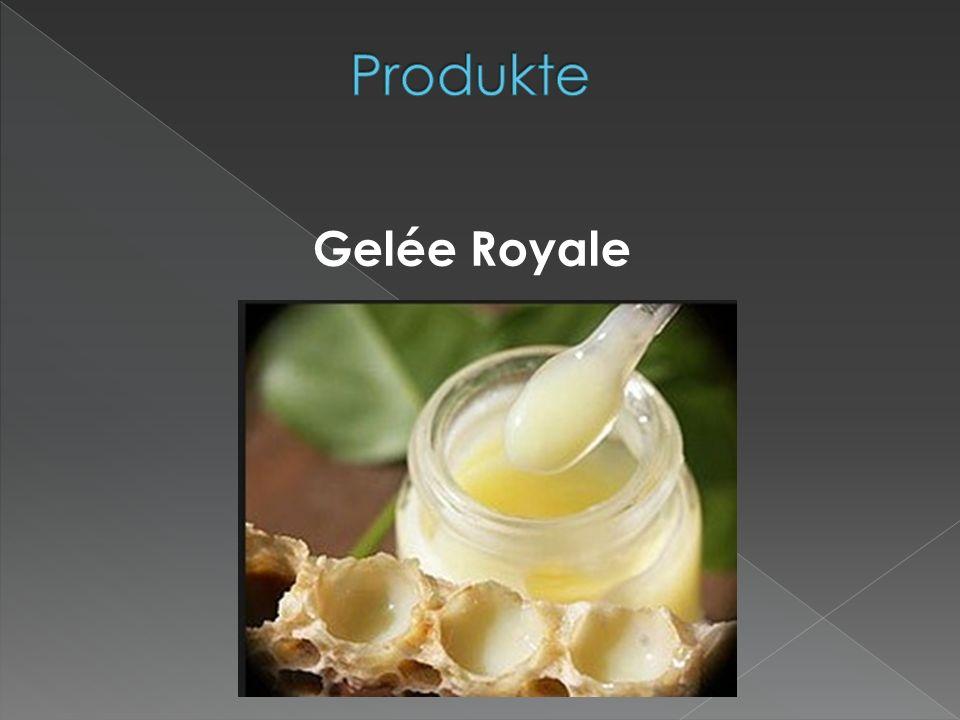 Produkte Gelée Royale