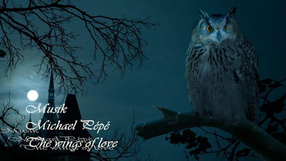 Musik Michael Pépé The wings of love