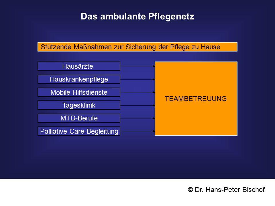 Das ambulante Pflegenetz