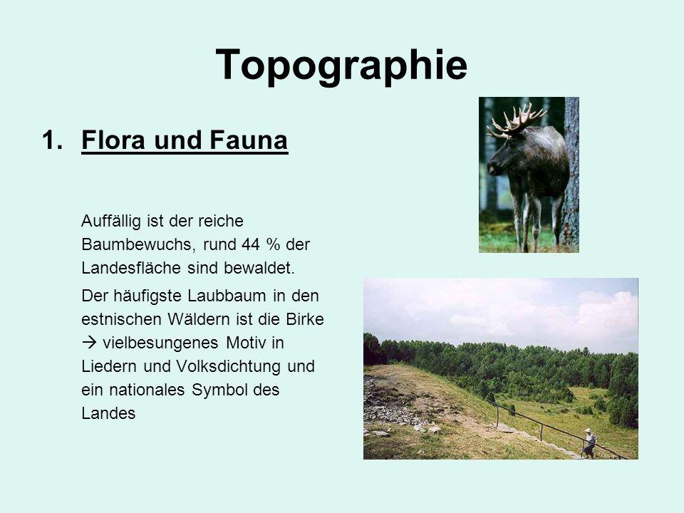 Topographie Flora und Fauna