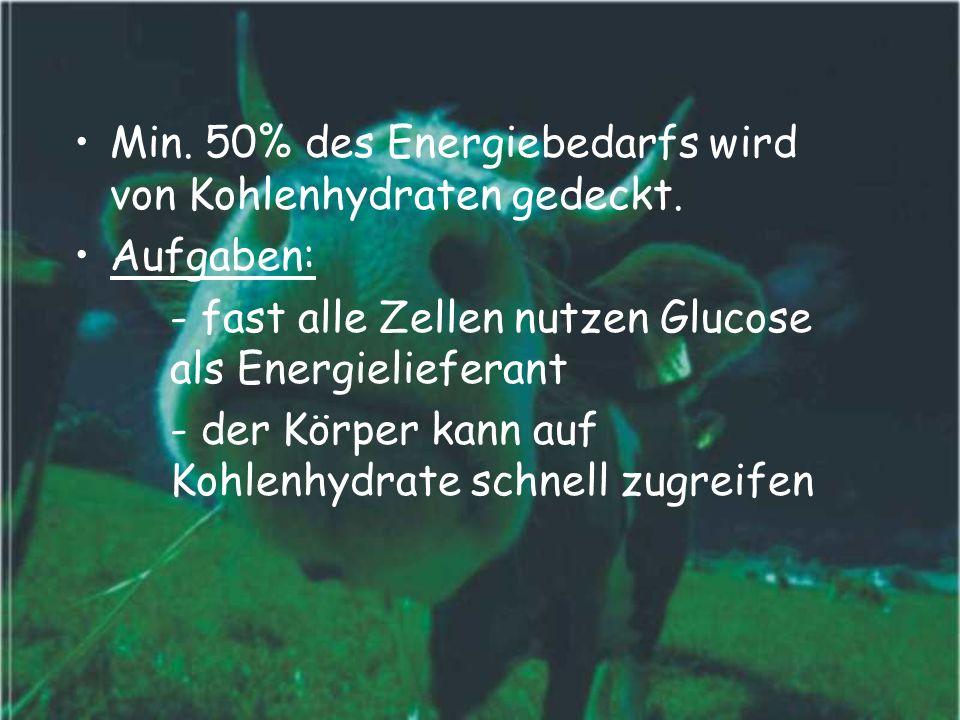 Min. 50% des Energiebedarfs wird von Kohlenhydraten gedeckt.