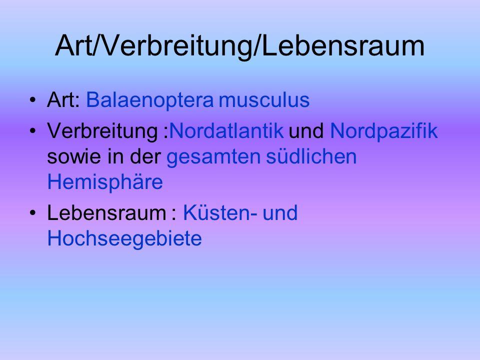 Art/Verbreitung/Lebensraum