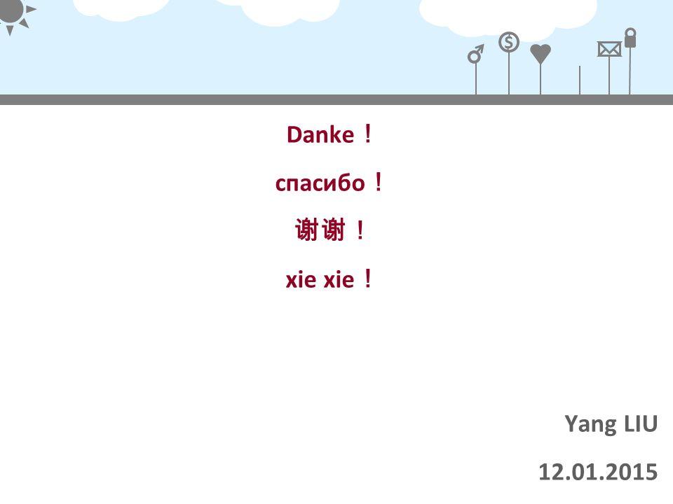 Danke! спасибо! 谢谢! xie xie! Yang LIU 12.01.2015