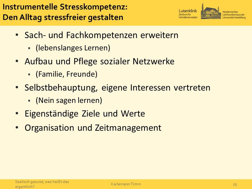 Instrumentelle Stresskompetenz: Den Alltag stressfreier gestalten
