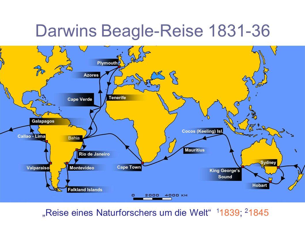 Darwins Beagle-Reise 1831-36