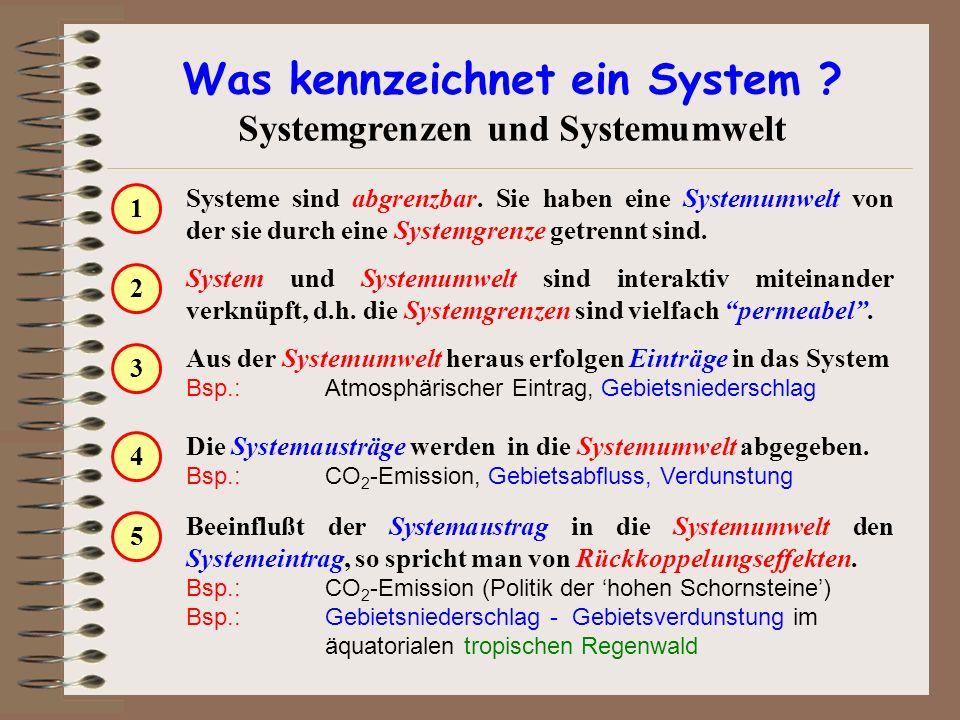 Was kennzeichnet ein System Systemgrenzen und Systemumwelt
