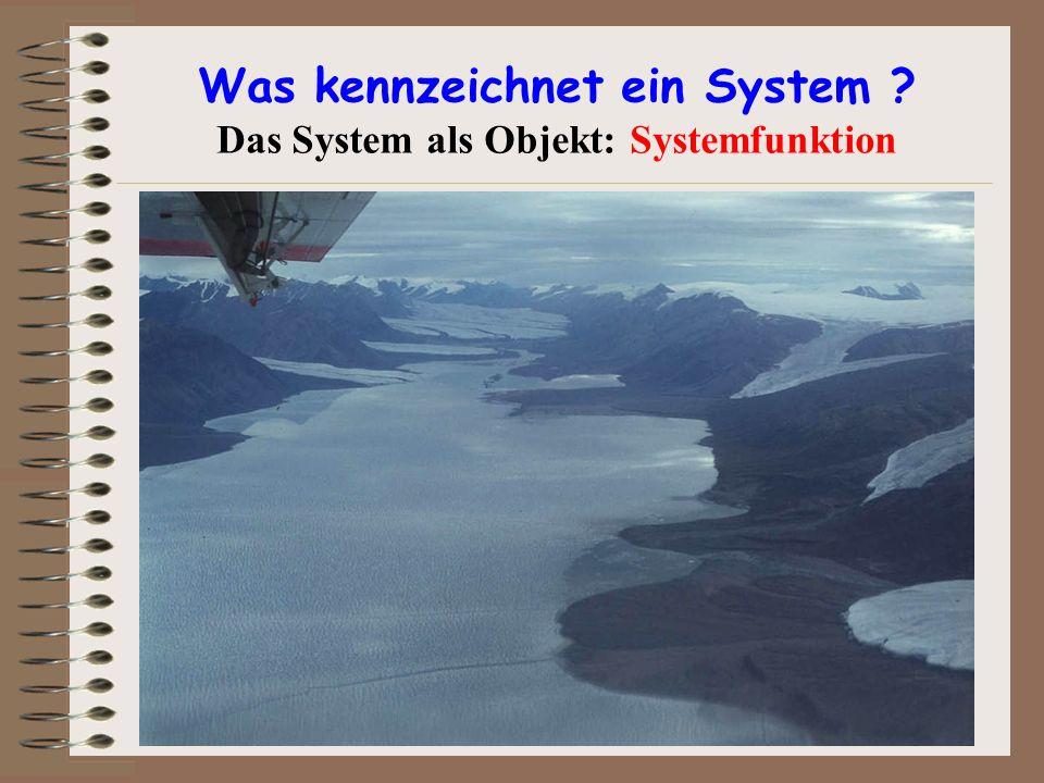 Was kennzeichnet ein System Das System als Objekt: Systemfunktion