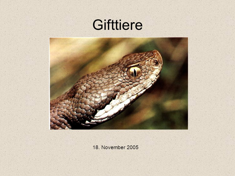 Gifttiere 18. November 2005