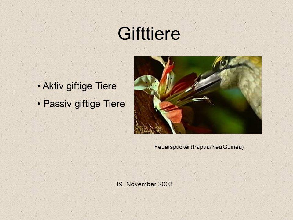 Gifttiere Aktiv giftige Tiere Passiv giftige Tiere 19. November 2003