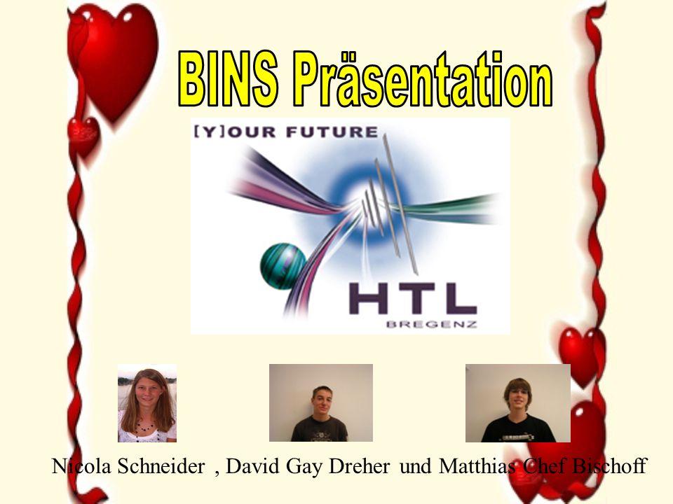 BINS Präsentation Nicola Schneider , David Gay Dreher