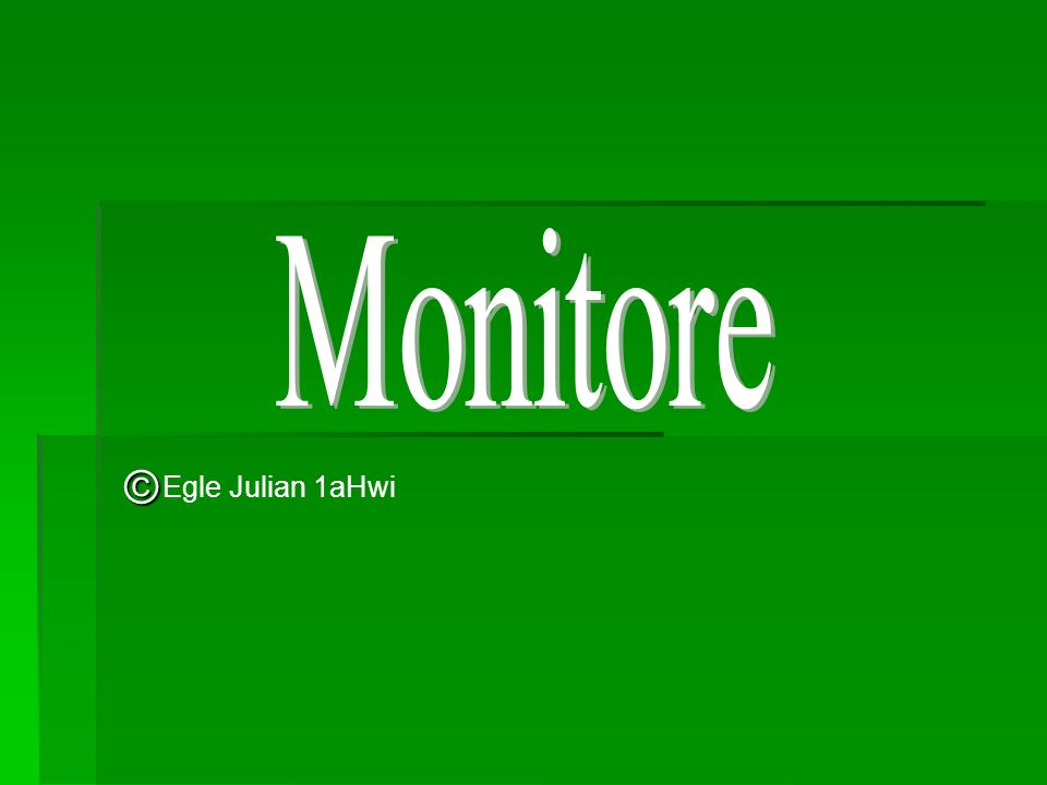 Monitore © Egle Julian 1aHwi