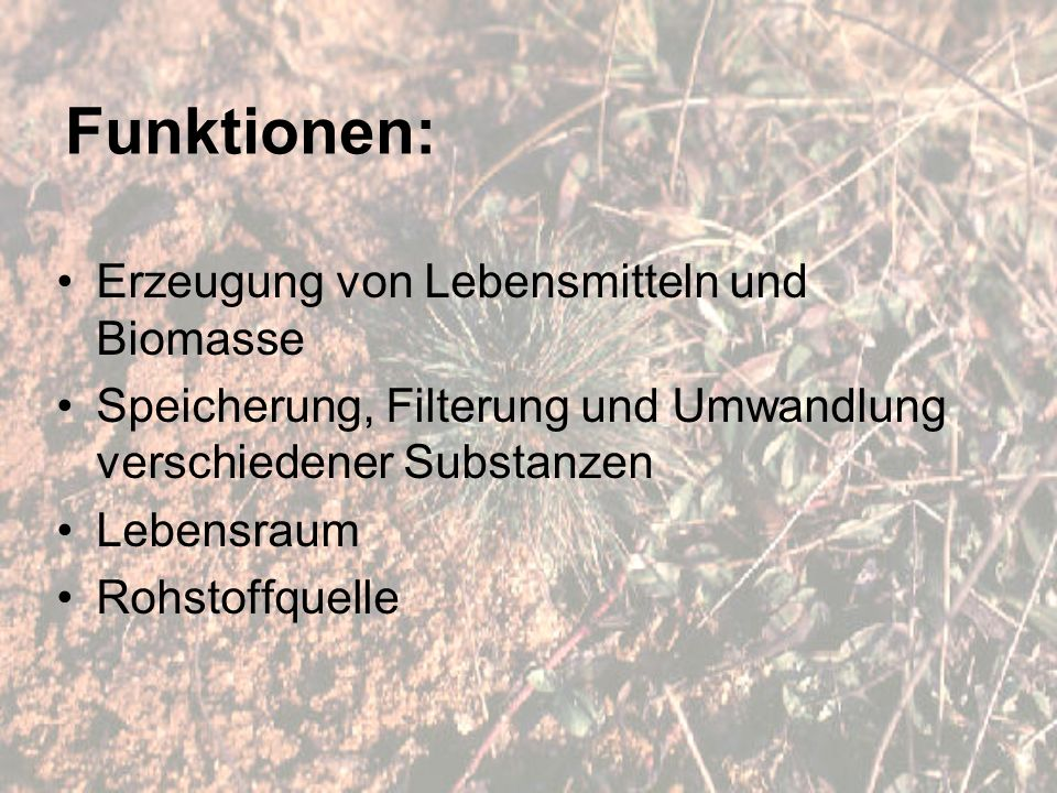 Funktionen: Erzeugung von Lebensmitteln und Biomasse