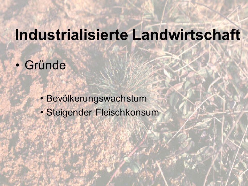 Industrialisierte Landwirtschaft