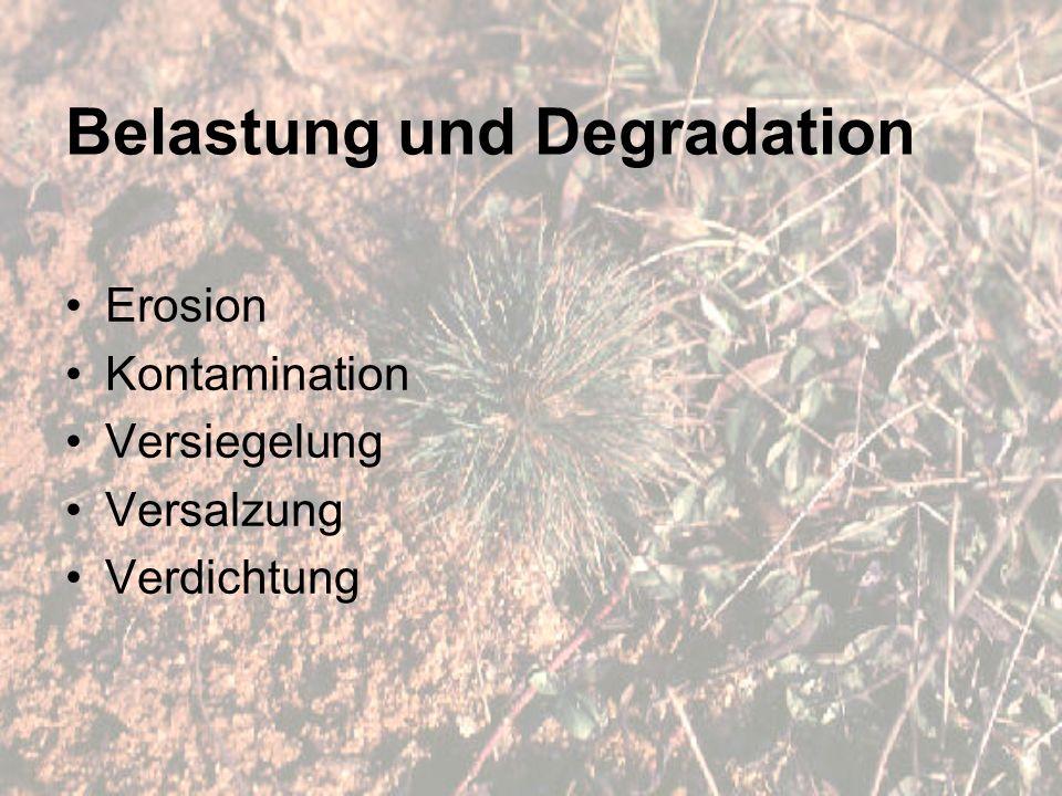 Belastung und Degradation