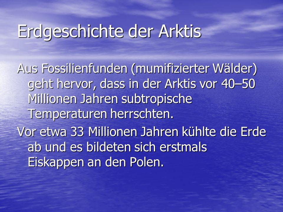 Erdgeschichte der Arktis
