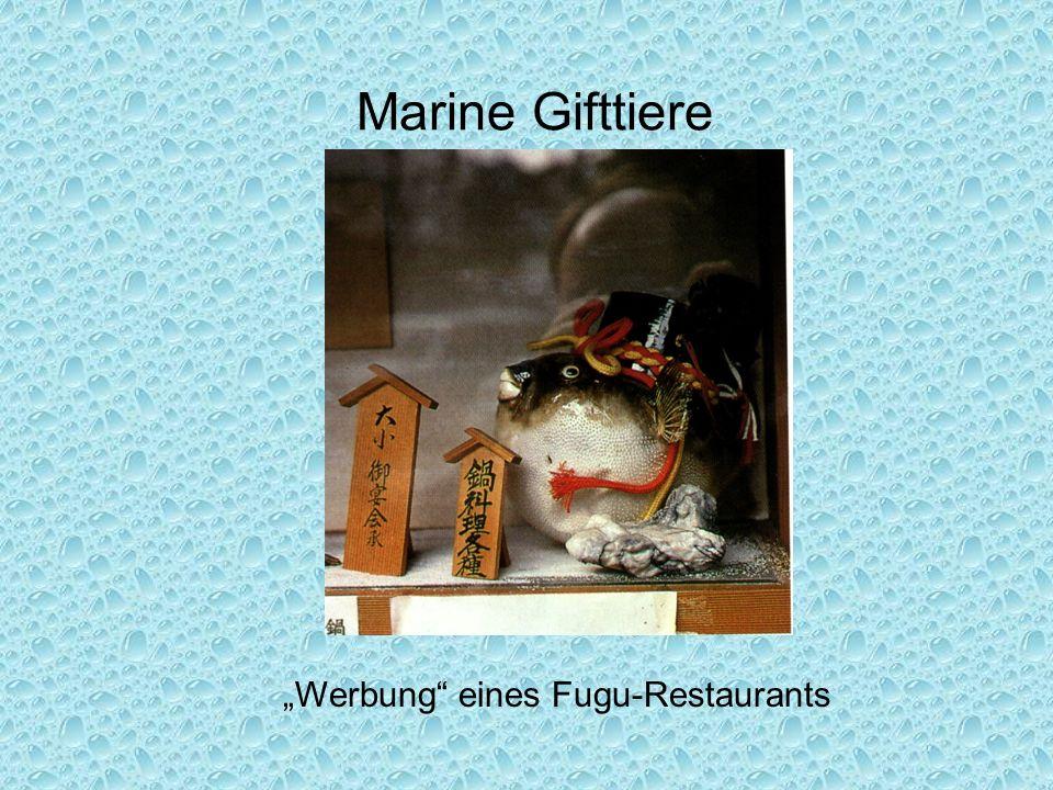 """Marine Gifttiere """"Werbung eines Fugu-Restaurants"""