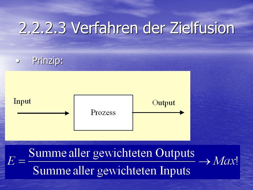 2.2.2.3 Verfahren der Zielfusion