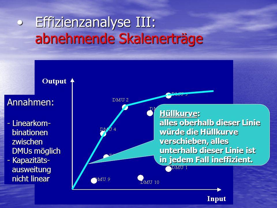 Effizienzanalyse III: abnehmende Skalenerträge