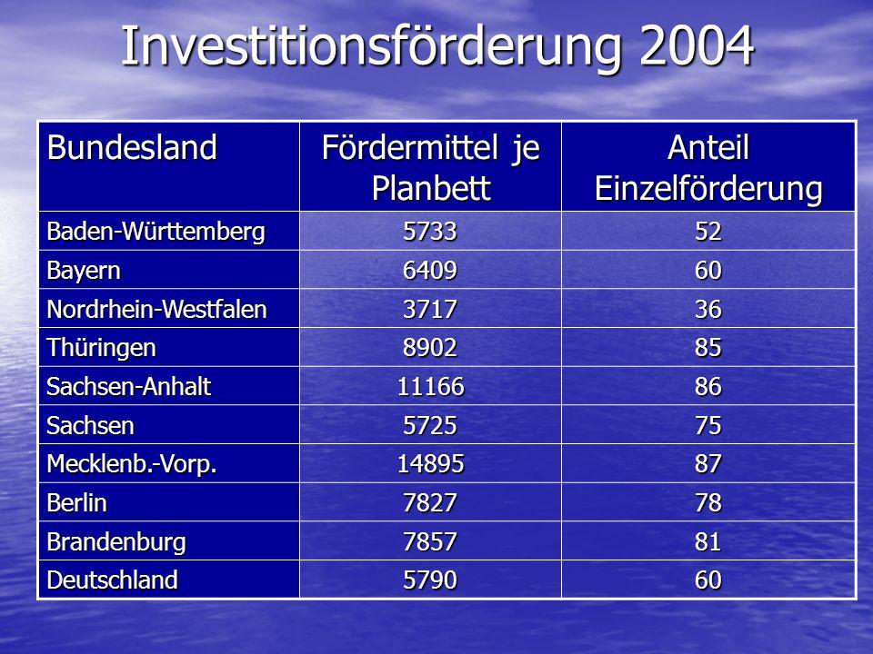 Investitionsförderung 2004