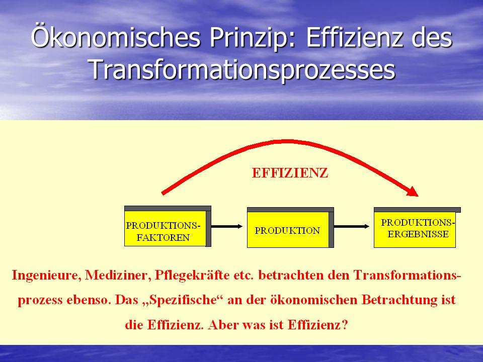 Ökonomisches Prinzip: Effizienz des Transformationsprozesses