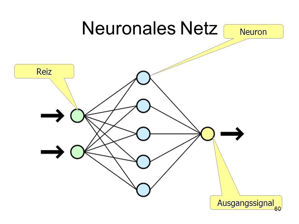 Neuronales Netz Neuron Reiz Ausgangssignal