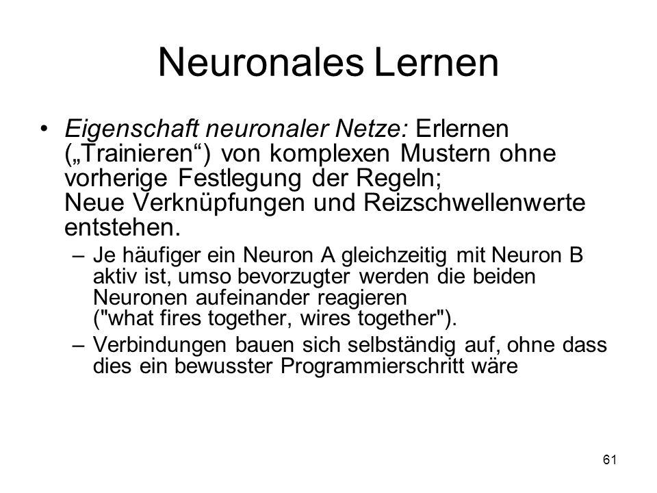 Neuronales Lernen