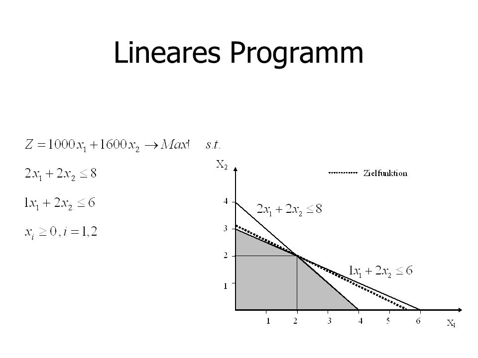 Lineares Programm