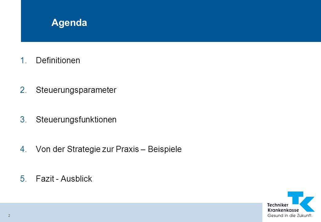 Agenda Definitionen Steuerungsparameter Steuerungsfunktionen
